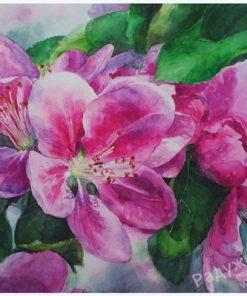 Розовый май
